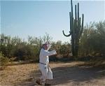 sunsu-saguaro